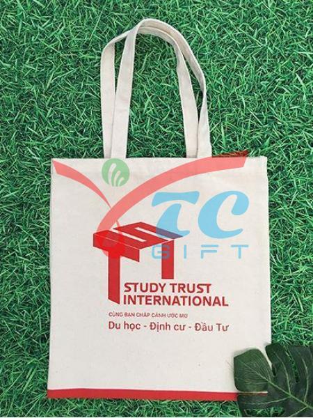TÚI CANVAS MÀU TRẮNG KEM STUDY TRUST INTERNATIONAL